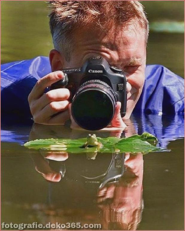 Eventuell schwierige Arbeit des Fotografen (28)