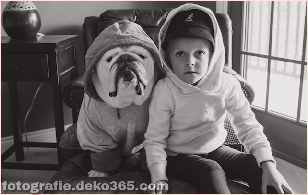 Freundschaft mit Mädchen und Tieren_5c8fff2802a54.jpg