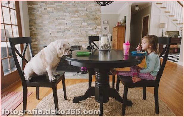 Freundschaft mit Mädchen und Tieren_5c8fff427b1de.jpg