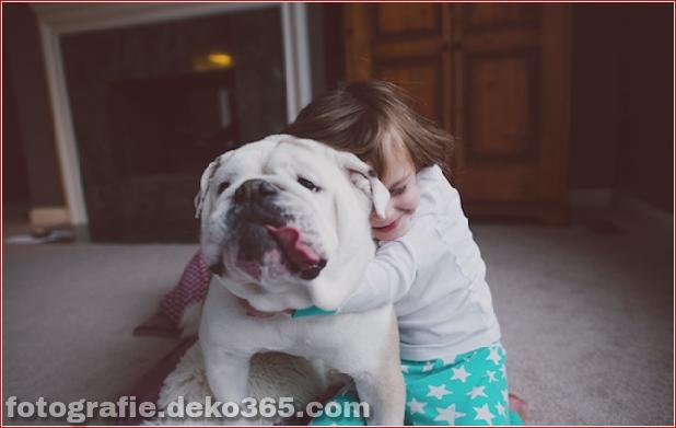 Tierfreundschaft Portraits (14)