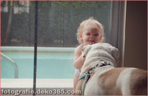 Tierfreundschafts-Portraits (18)