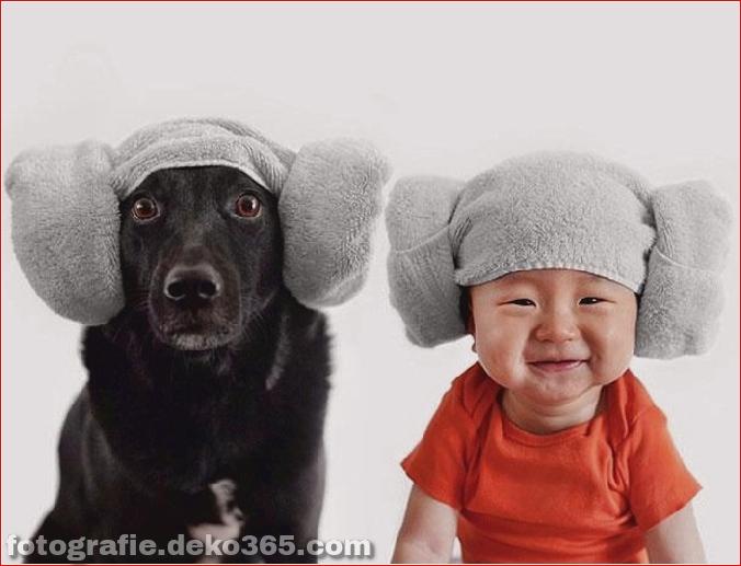 Rettungshund und Baby (3)