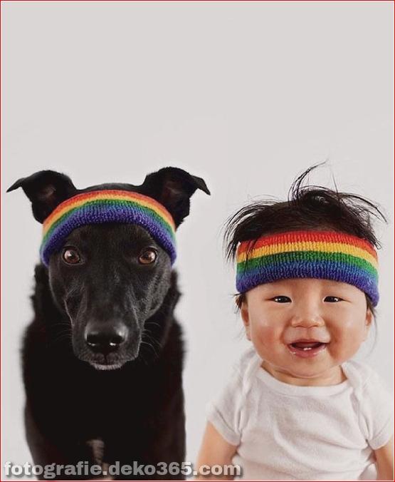 Rettungshund und Baby (7)