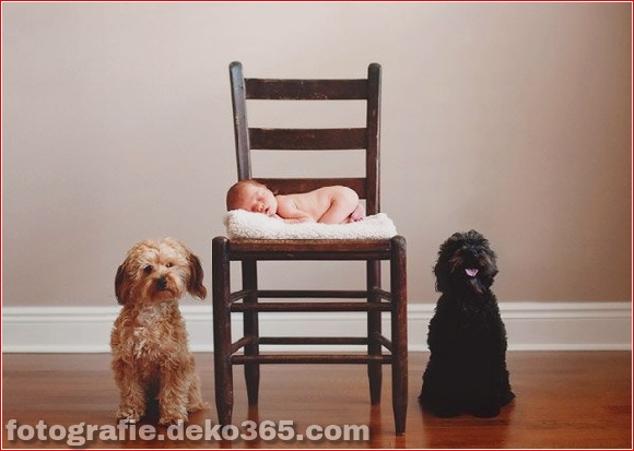 Gerade geborene Babybilder_5c9037b3c73d5.jpg