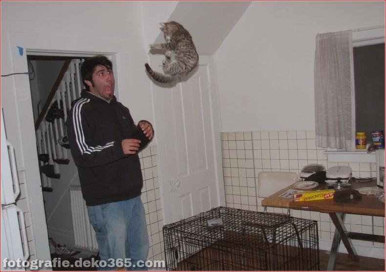 Hüten Sie sich vor Tierangriffen (34)