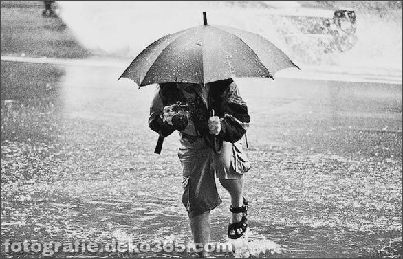 Interessant Atmosphärisch in Regen Fotos (2)