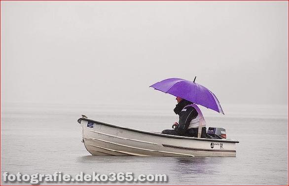 Interessant Atmosphärisch in Regen Fotos (11)