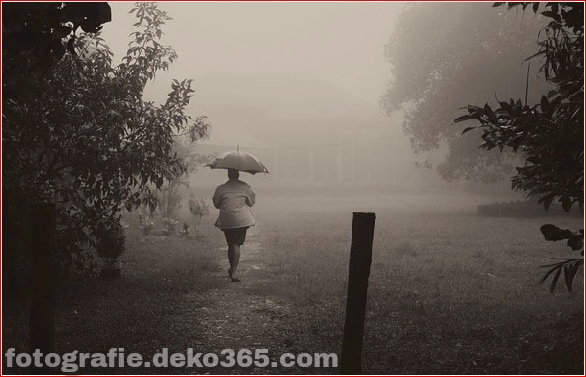 Interessant Atmosphärisch in Regen Fotos (21)