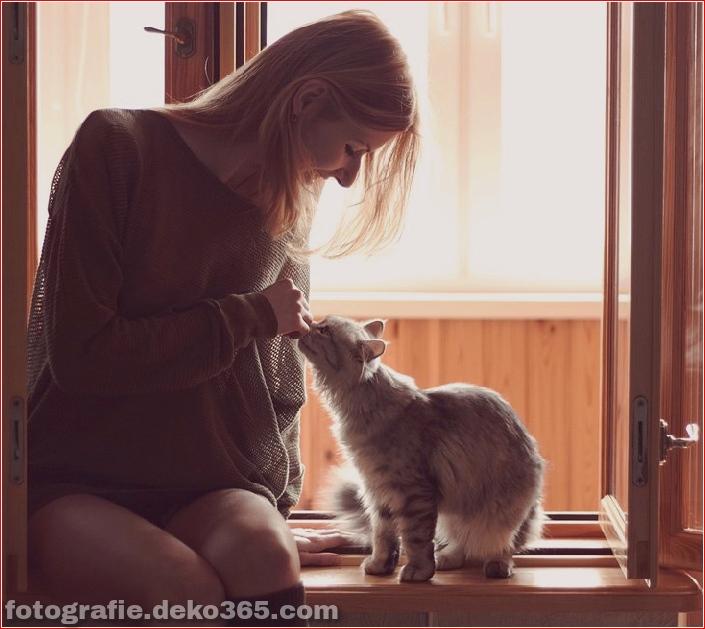 Katze mit Mädchen_5c90613db47ac.jpg