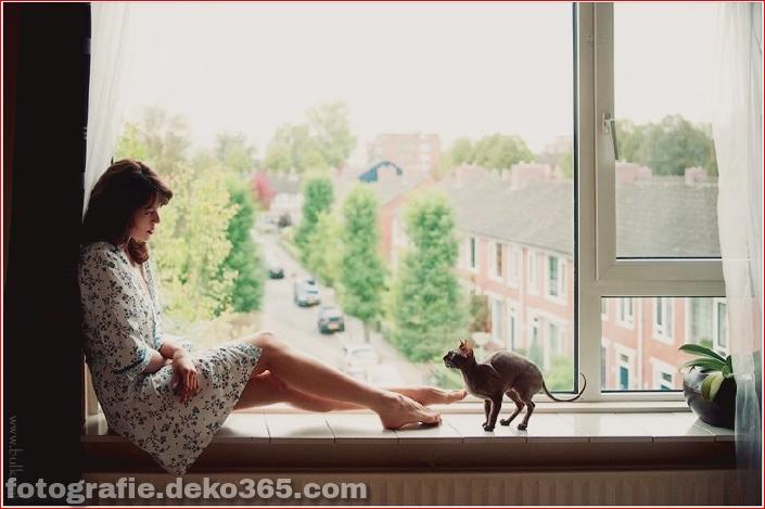 Katze mit Mädchen_5c906141d9ba8.jpg