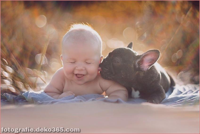 Baby- und Bulldogge-Fotografie (3)