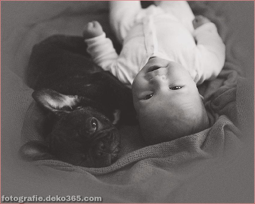 Baby- und Bulldogge-Fotografie (4)