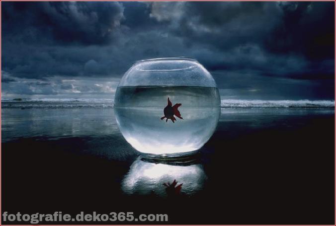 Ideen für konzeptionelle Fotografie (21)