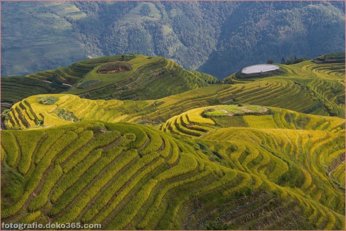 Luftbild von Beauty China_5c9000c1a75f4.jpg