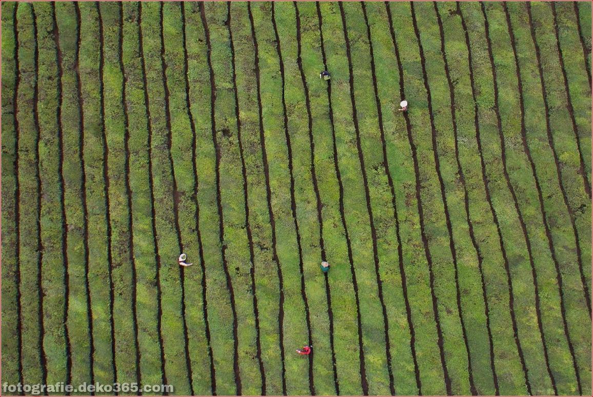 Luftbild von Beauty China_5c9000c559c00.jpg