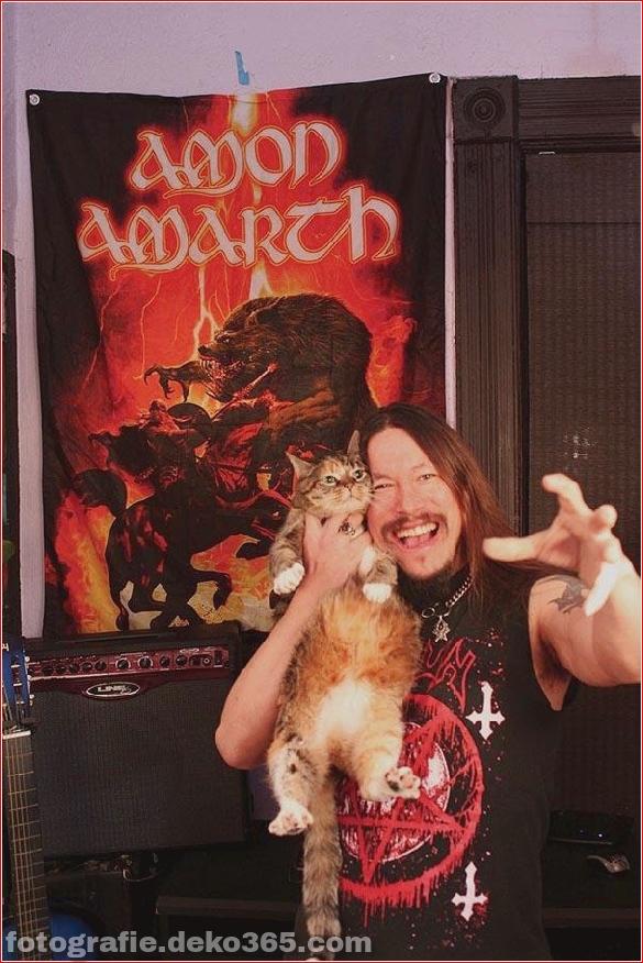 Süße Katzen und die Metalheads, die sie lieben (2)