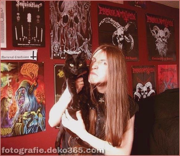 Süße Katzen und die Metalheads, die sie lieben (4)