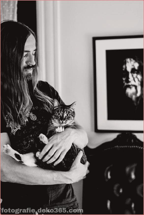 Süße Katzen und die Metalheads, die sie lieben (5)