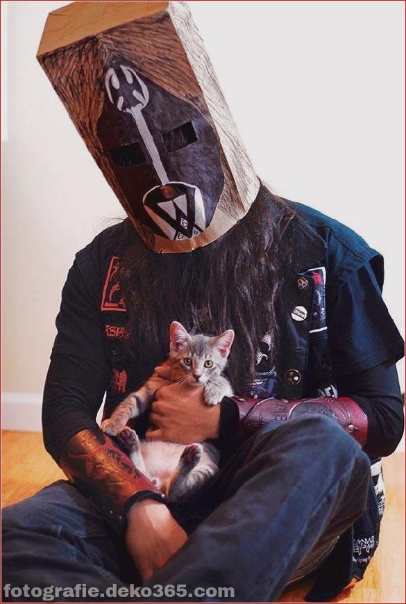 Süße Katzen und die Metalheads, die sie lieben (8)