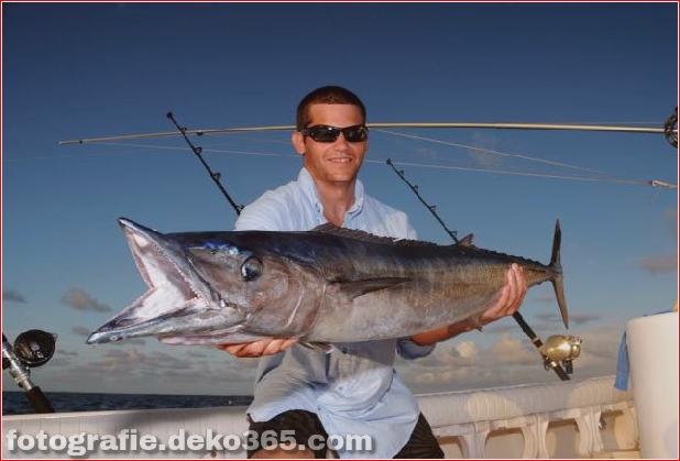 Erfolgreiche Fangbilder - Oregon Inlet Fishing (1)