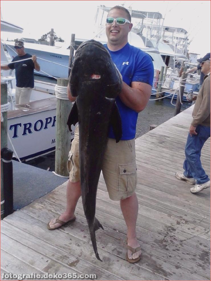 Erfolgreiche Fangbilder - Oregon Inlet Fishing (2)