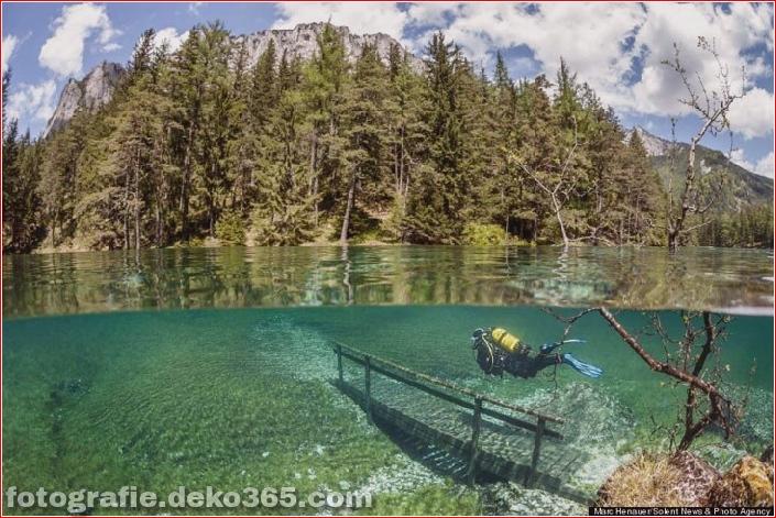 Österreichs spektakuläre Unterwasserwelt (1)