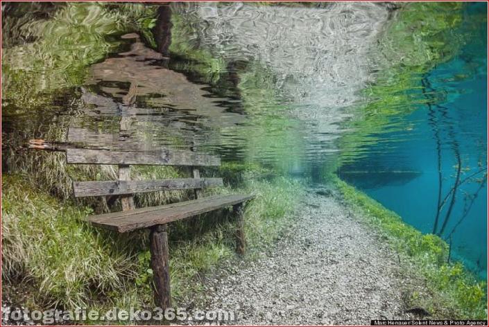 Österreichs spektakuläre Unterwasserwelt (2)