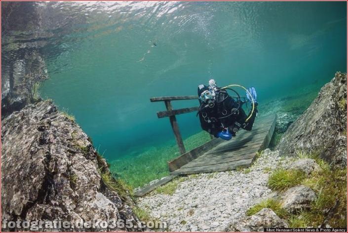 Österreichs spektakuläre Unterwasserwelt (3)