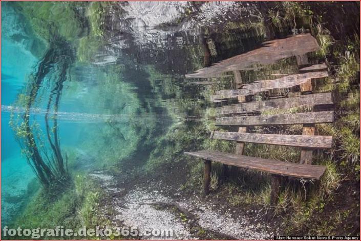 Österreichs spektakuläre Unterwasserwelt (5)
