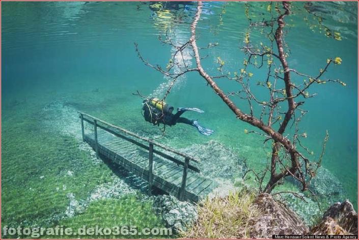 Österreichs spektakuläre Unterwasserwelt (6)