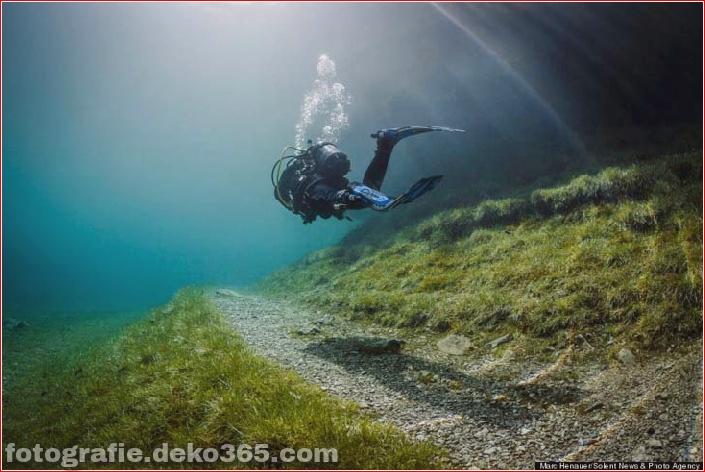 Österreichs spektakuläre Unterwasserwelt (8)