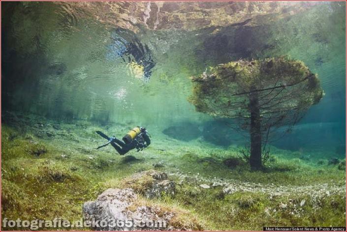 Österreichs spektakuläre Unterwasserwelt (9)