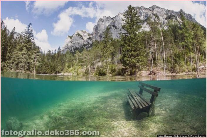 Österreichs spektakuläre Unterwasserwelt (10)