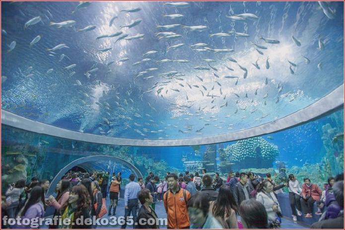 Zhuhai Changlong Ozean Königreich in China (1)