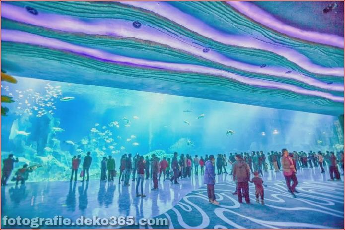 Zhuhai Changlong Ozean Königreich in China (2)
