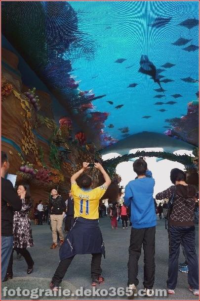 Zhuhai Changlong Ozean Königreich in China (16)