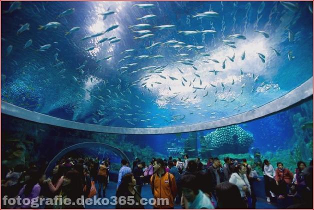 Zhuhai Changlong Ozean Königreich in China (17)