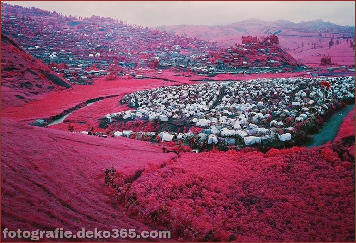 Rosa Farbe Ostkongo_5c9055c396668.jpg