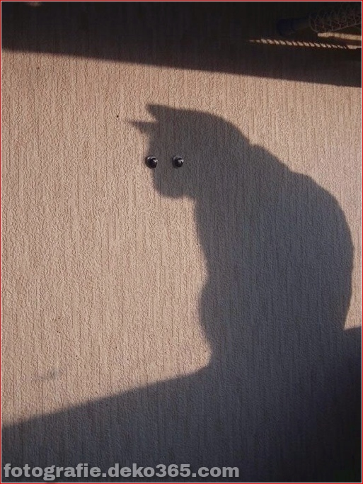 Schatten, die interessant sein könnten (1)