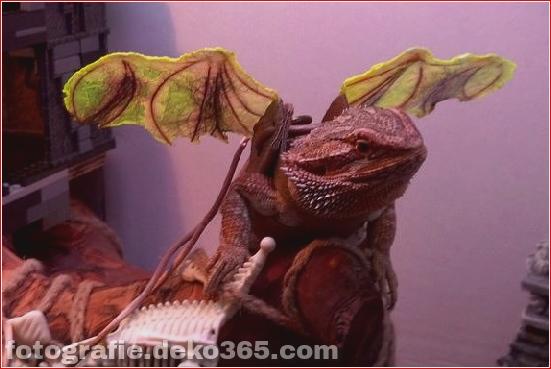 Schöne Halloween-Tierkostüme (4)