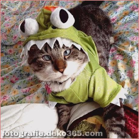 Schöne Halloween-Tierkostüme (8)