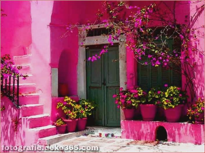 Schöne rosa Farbfotos_5c9064aa4e974.jpg