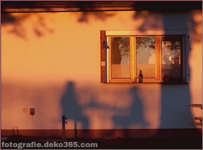 Schöne Schattenfotografie_5c9067a80699e.jpg