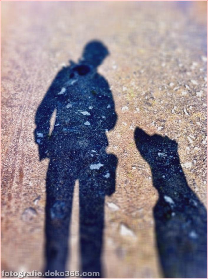 Schöne Schattenfotografie_5c9067be1b0d1.jpg