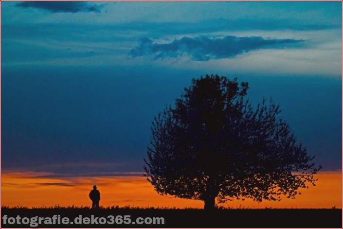 Schöne Schattenfotografie_5c9067c1054ea.jpg