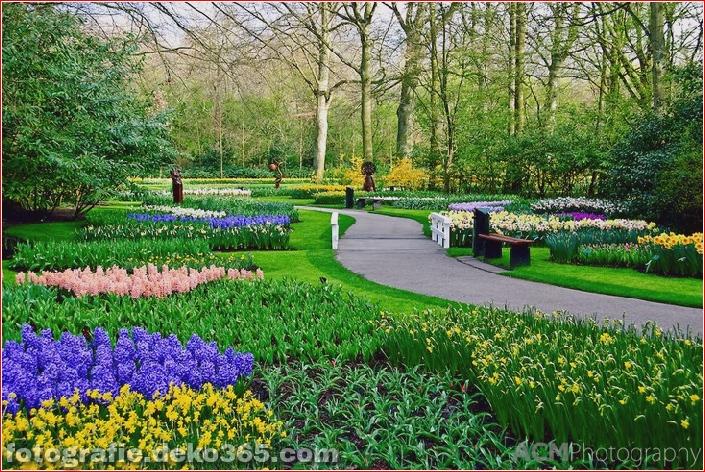 Weltgrößter Blumengarten - Niederlande (2)