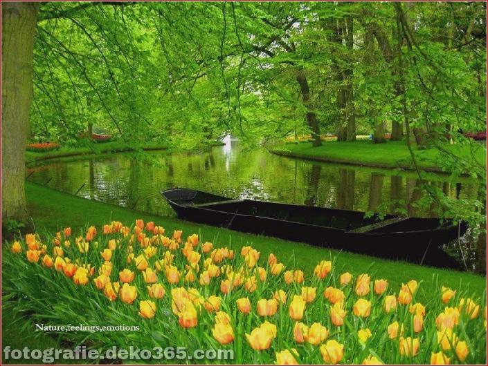 Weltgrößter Blumengarten - Niederlande (4)