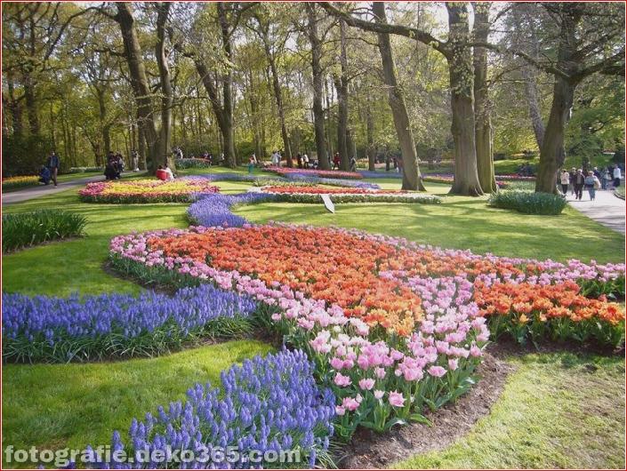 Weltgrößter Blumengarten - Niederlande (5)