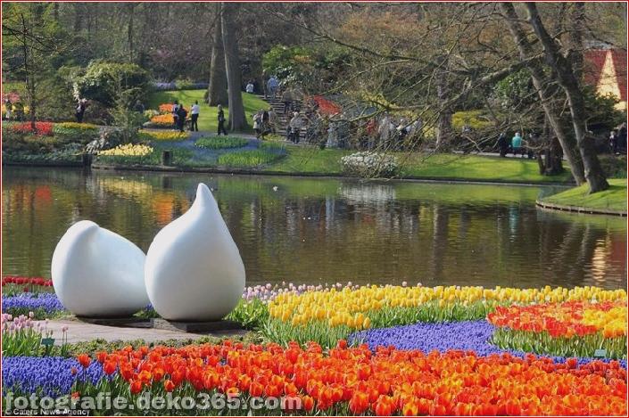 Weltgrößter Blumengarten - Niederlande (14)