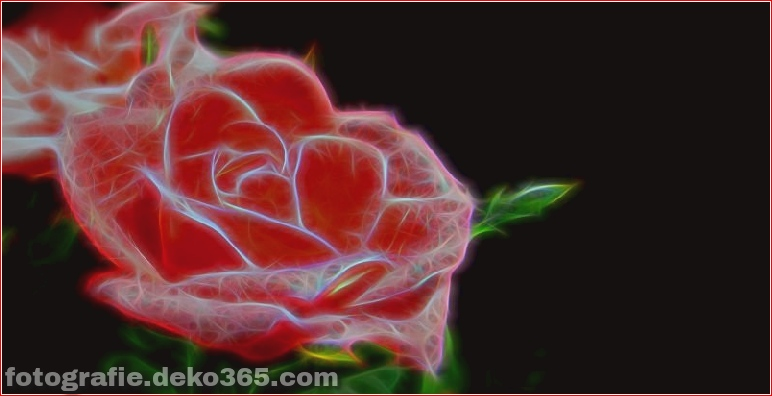 Die erste elektronische Cyborg-Rose der Welt (4)